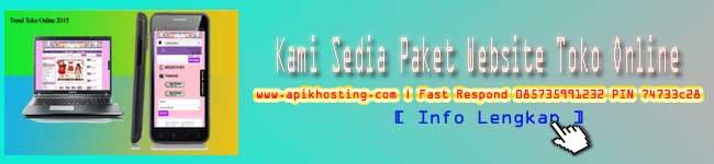 paket website madiun magetan jombang kertosono pacitan jakarta